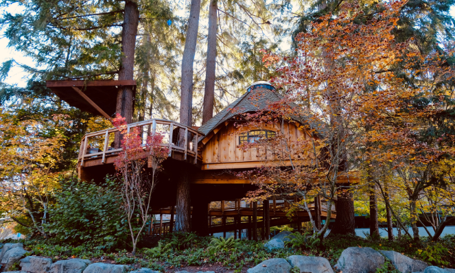 A sustainable treehouse vacation rental